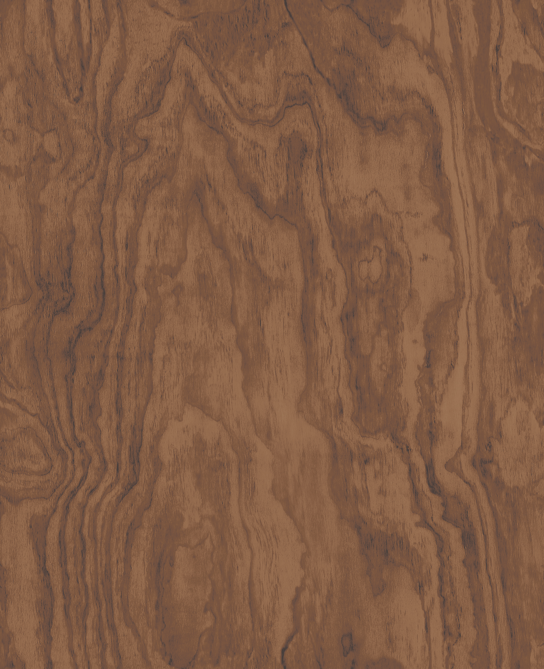 Picture of Bentham Brown Plywood Wallpaper