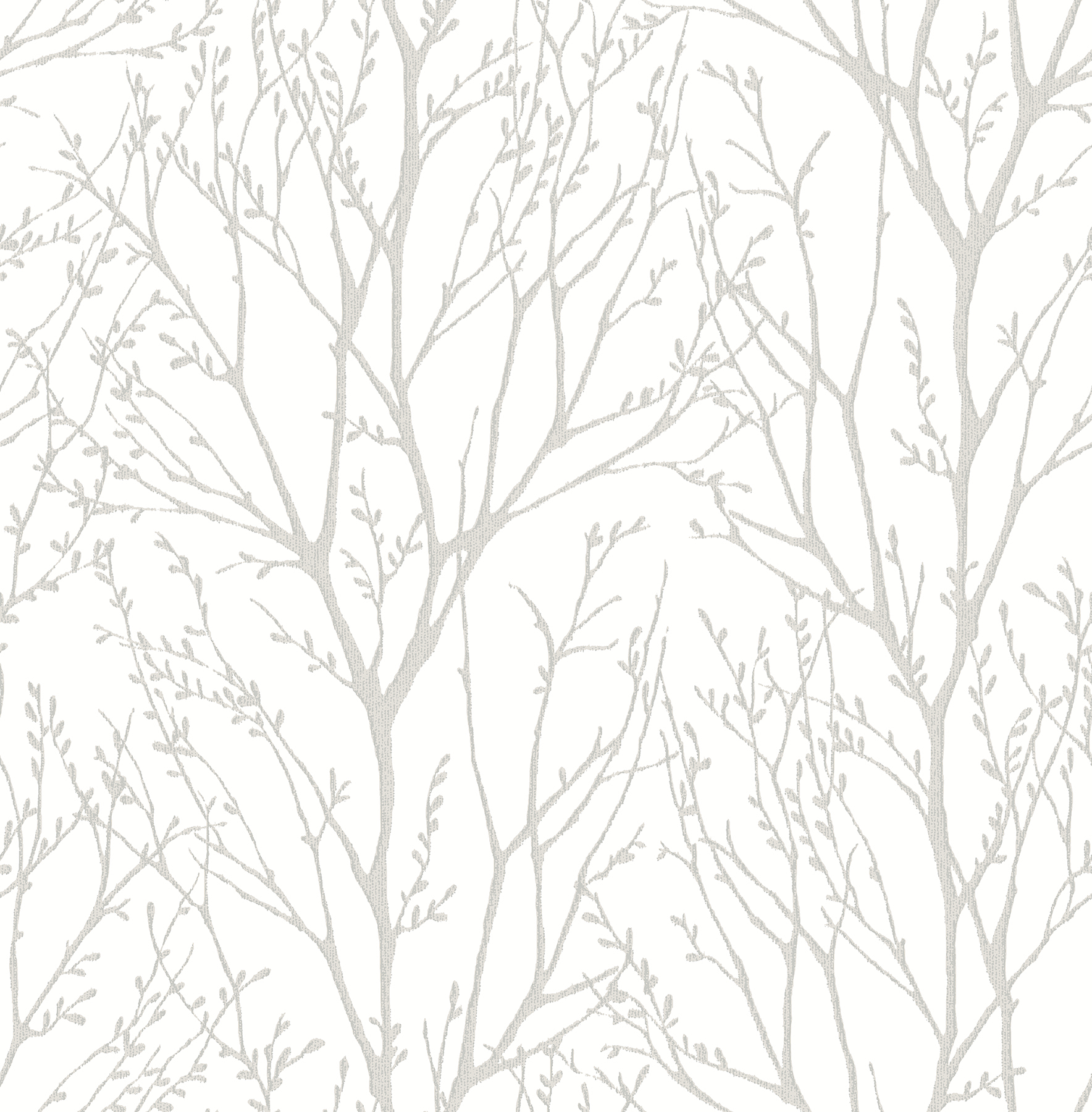 Picture of Autumn Silver Tree Wallpaper