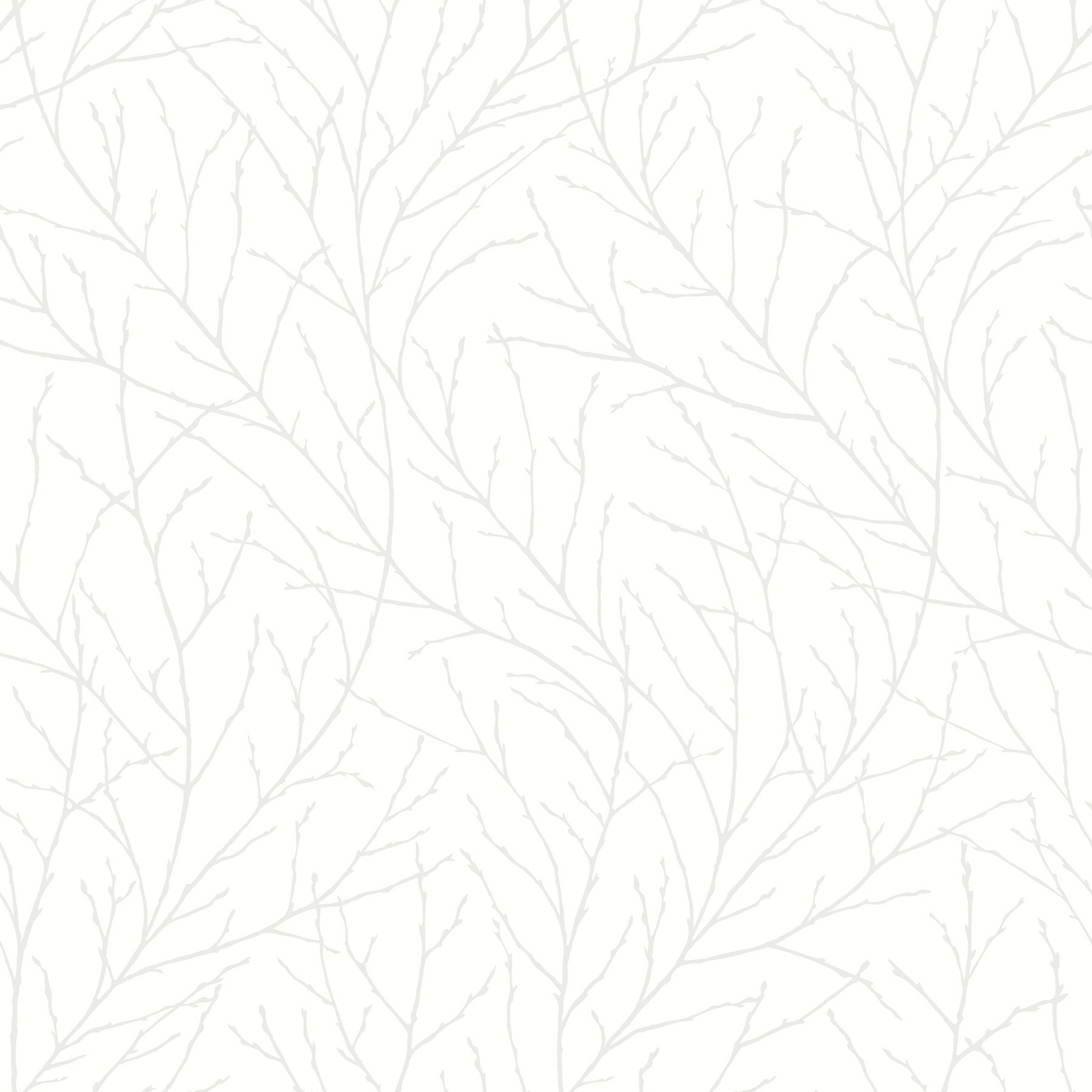 Picture of Branches Off-White Trees Wallpaper