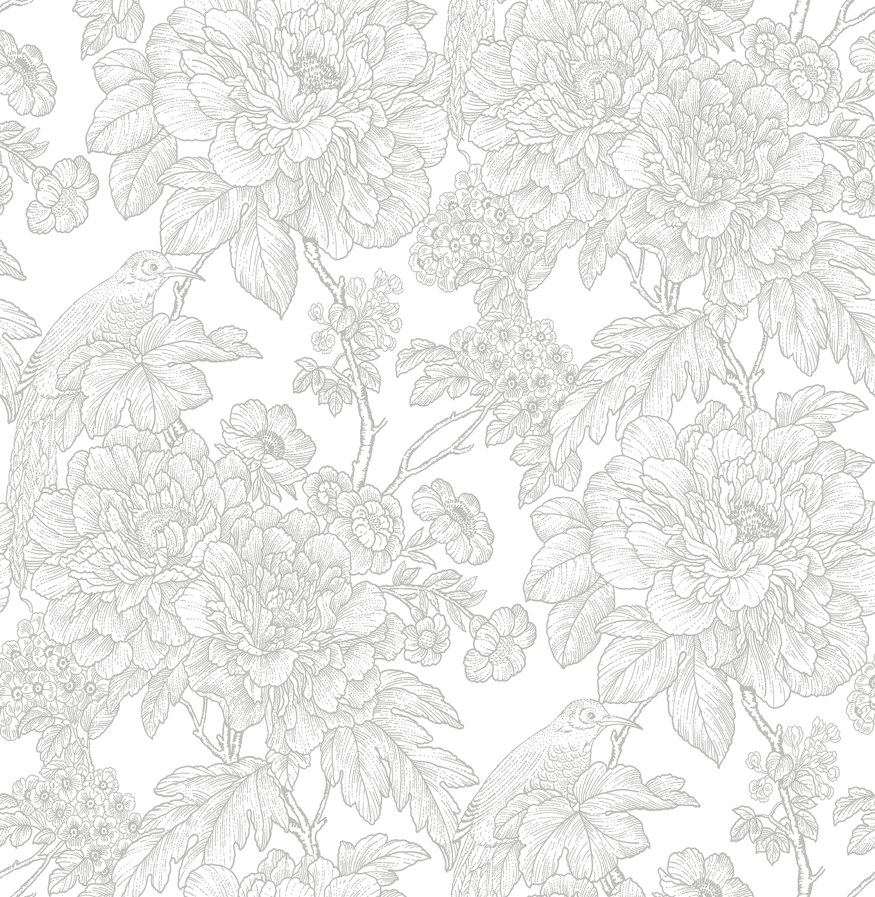 Picture of Birds of Paraside Breeze Grey Floral Wallpaper