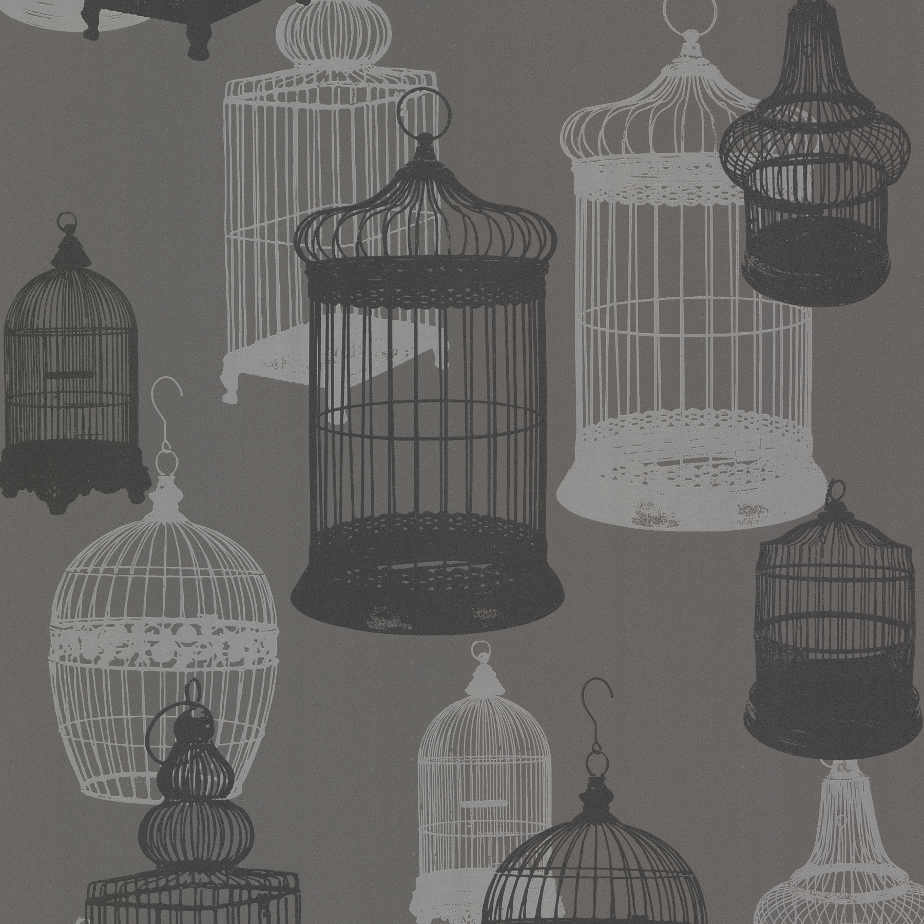 Picture of Avian Charcoal Bird Cages Wallpaper