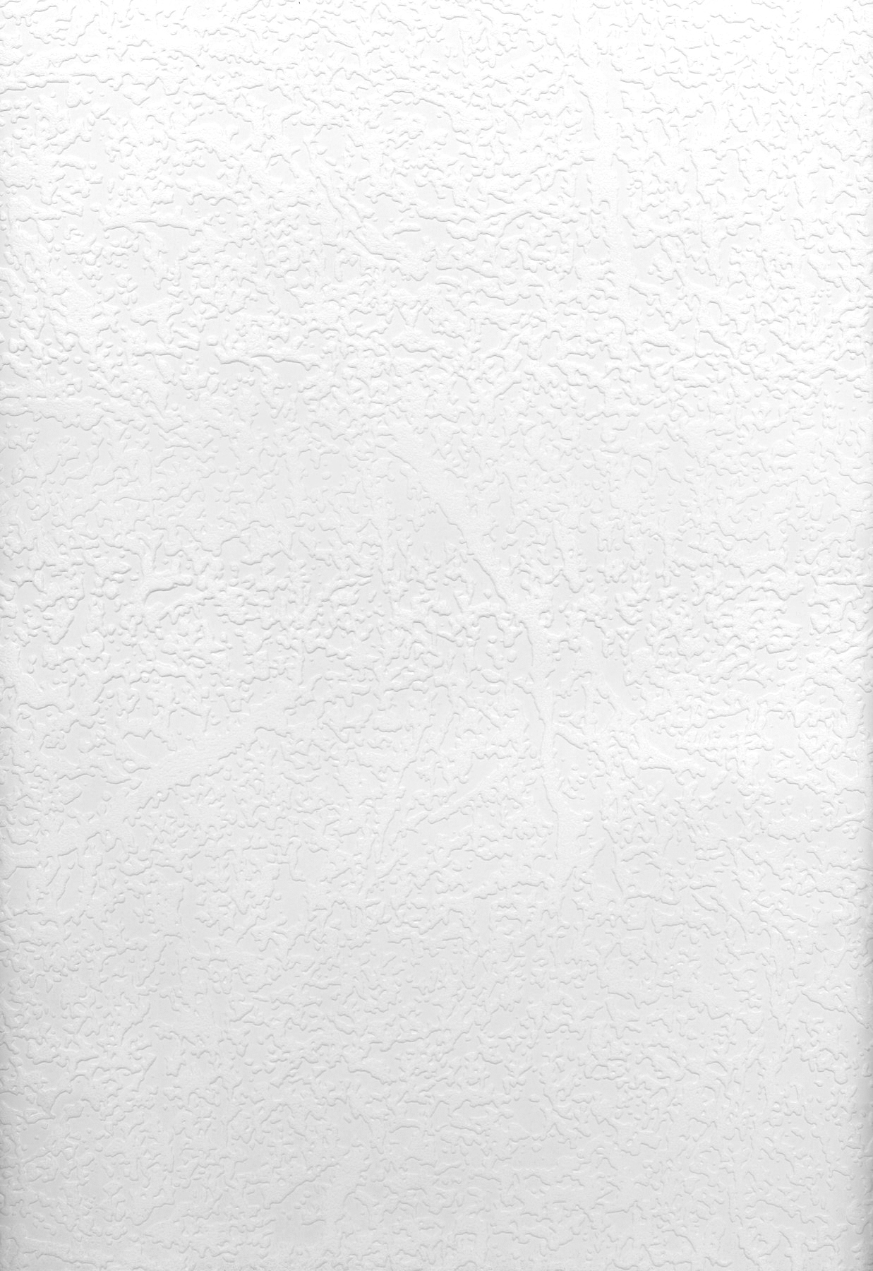 Picture of Brassica Organic Raised Texture Paintable Wallpaper