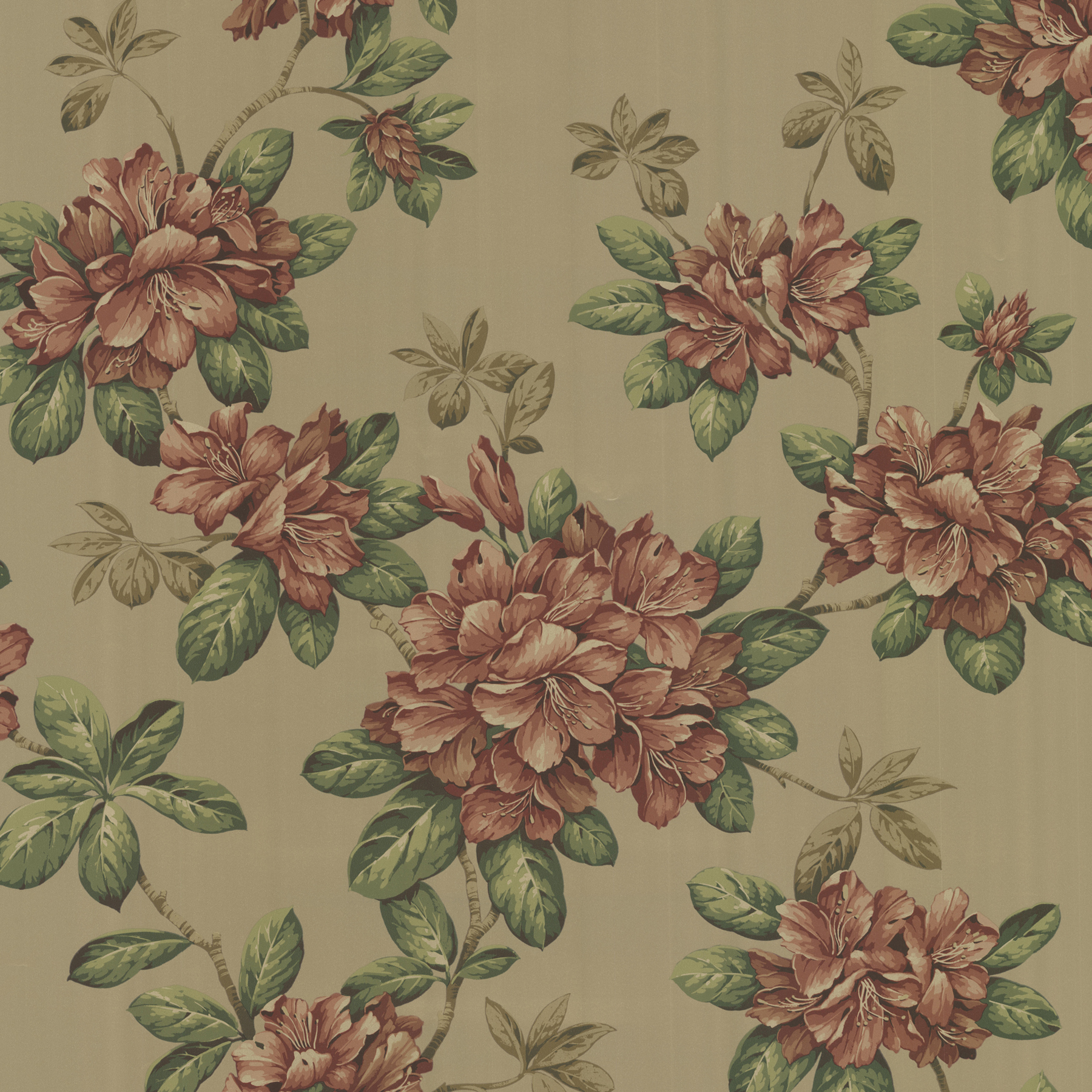 Picture of Bree Burnt Sienna Lily Trail Wallpaper