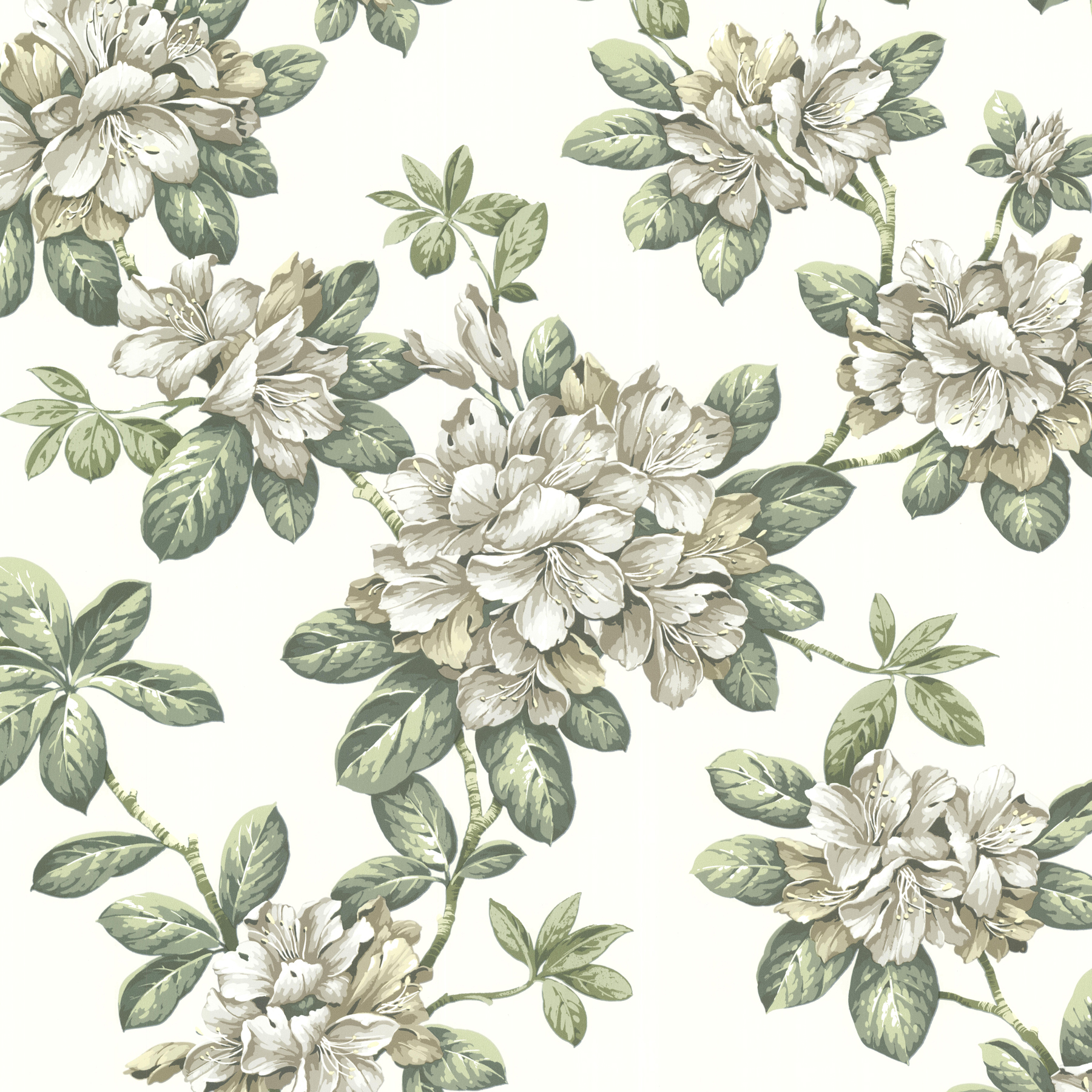Picture of Bree Ivory Lily Trail Wallpaper