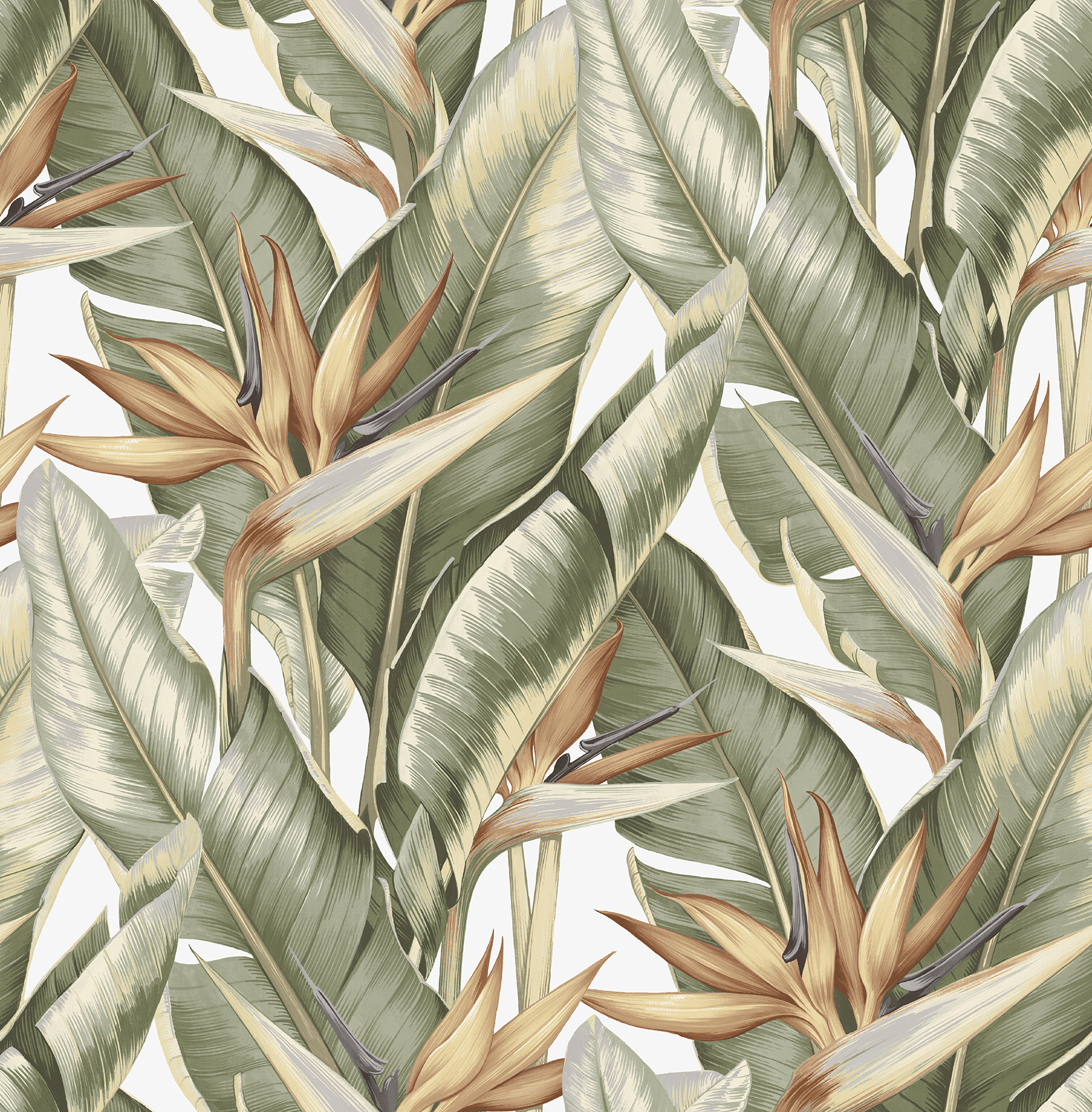 Picture of Arcadia Light Green Banana Leaf Wallpaper