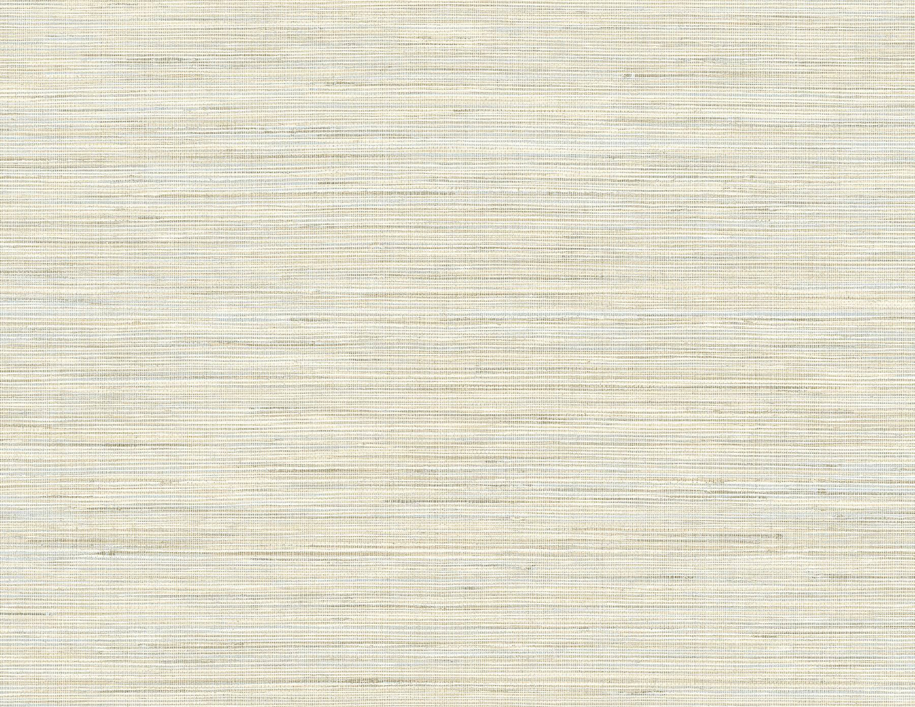 Picture of Baja Grass Blue Texture Wallpaper