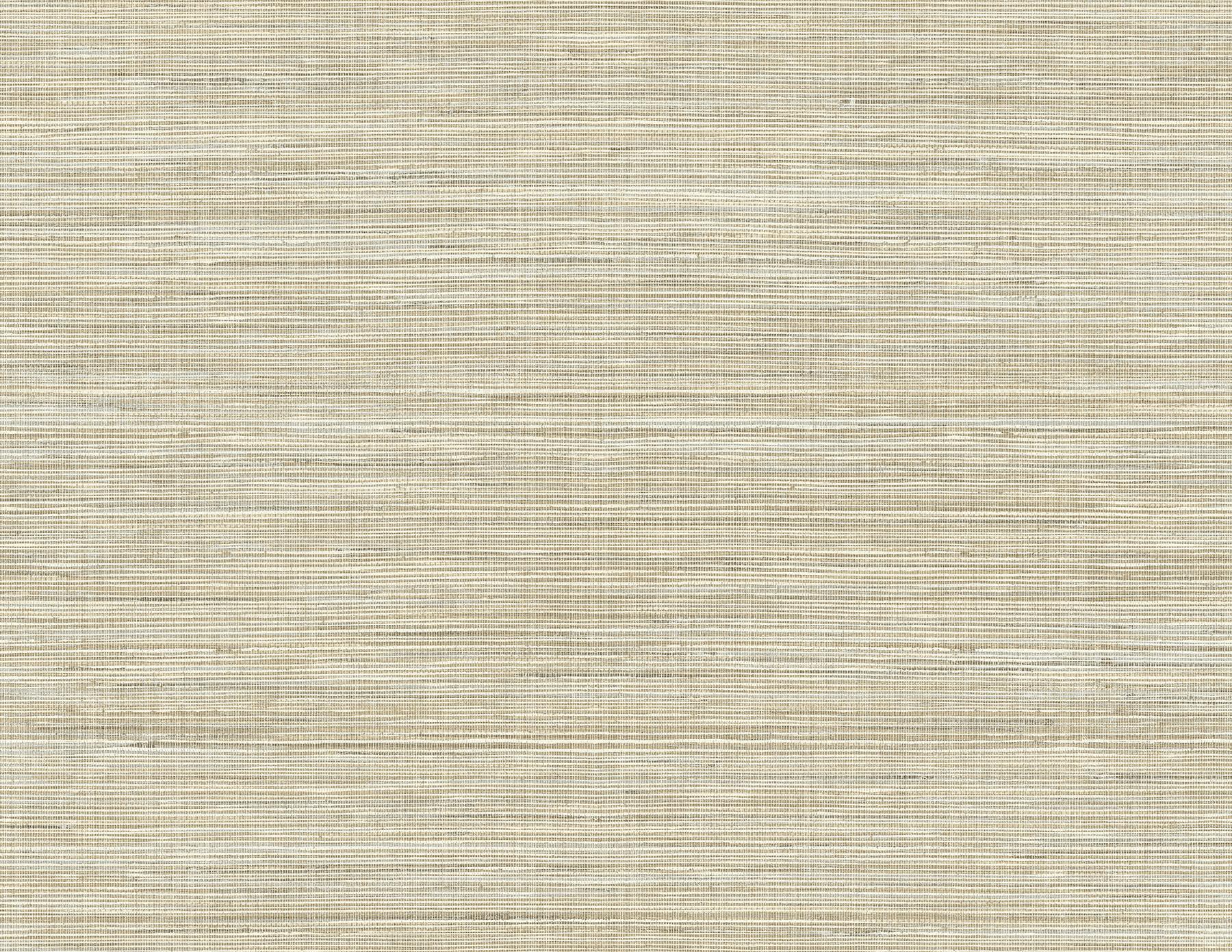 Picture of Baja Grass Brown Texture Wallpaper
