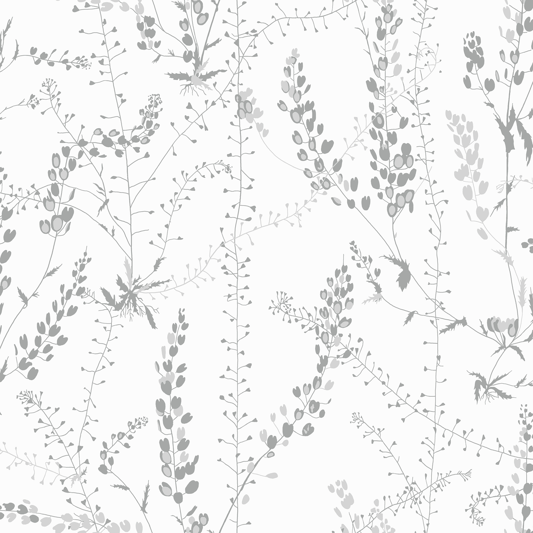 Picture of Bladranker Grey Botanical Wallpaper